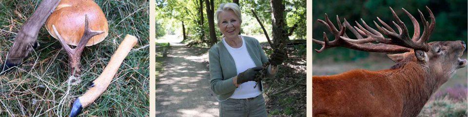 wandelen met gids | natuurgids | wildgids | Emmy van Willigen